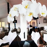 Orchid Centrepiece Display